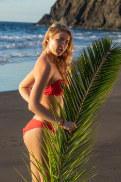 MetArt - Casey - Palm Fronds - 20 Nov, 2019, pic 5