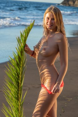 MetArt - Casey - Palm Fronds - 20 Nov, 2019, pic 8