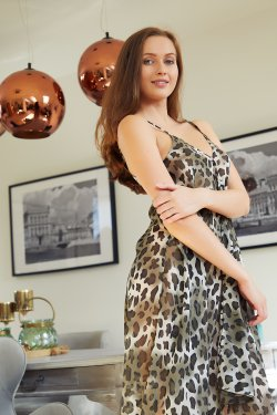 MetArt - Stacy Cruz - Leopard Dress - 08 Nov, 2019, pic 2