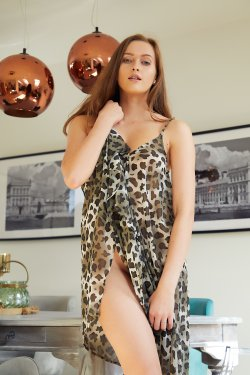 MetArt - Stacy Cruz - Leopard Dress - 08 Nov, 2019, pic 3